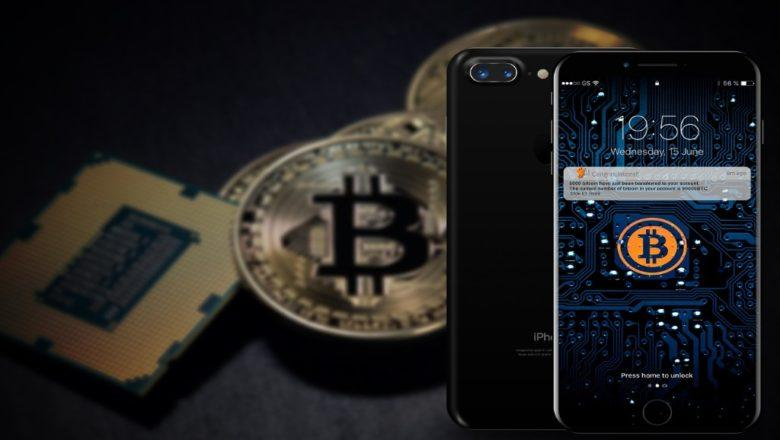 The Ultimate Guide to the Best Bitcoin Wallets