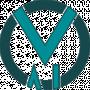 Vega AI Solutions