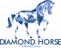 DIAMOND HORSE PERFORMANCE